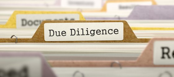 due diligence file