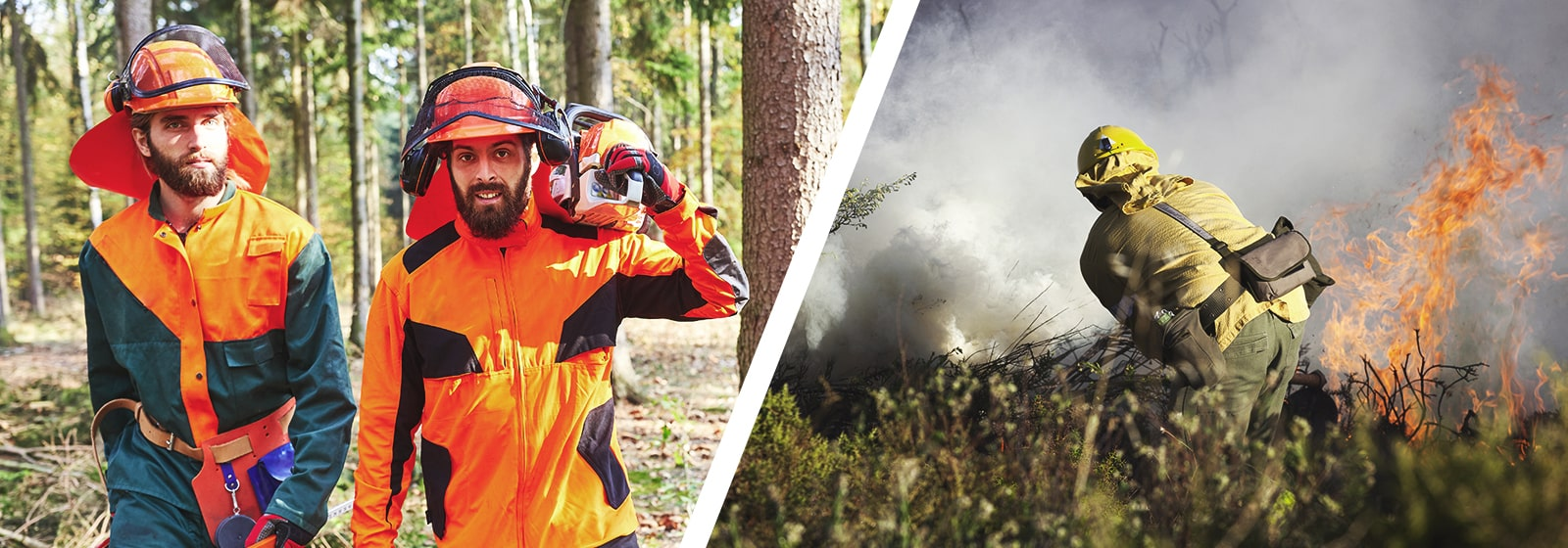 firefighting and forestry business for sale in western canada